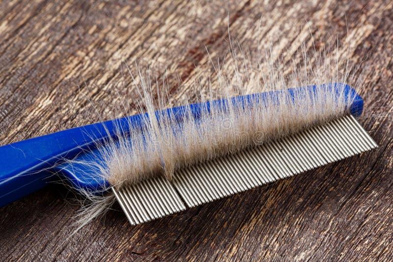 在猫梳子的毛皮 免版税库存图片