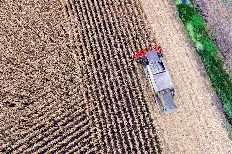 在玉米收获的空中寄生虫视图 库存图片