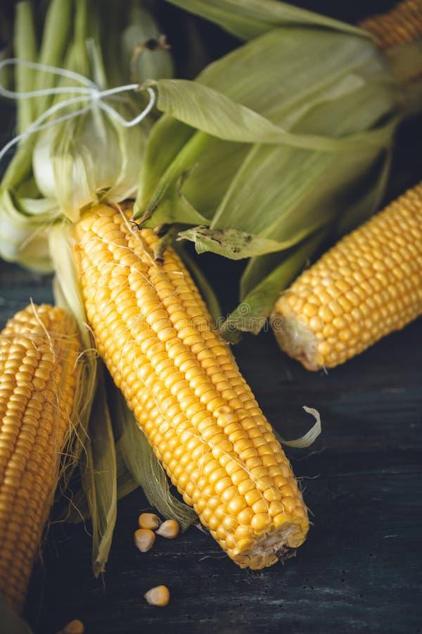 在玉米棒的新鲜的玉米准备好烹调 免版税图库摄影