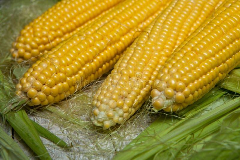 在玉米棒的新鲜的玉米在土气木桌,关闭上 甜玉米耳朵背景 免版税库存照片