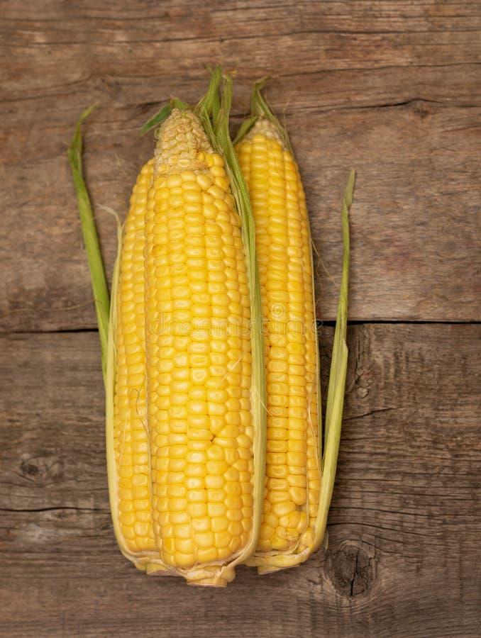 在玉米棒的新鲜的玉米在木背景 免版税库存照片