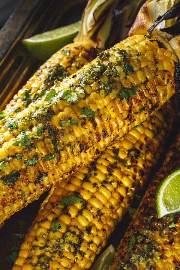 在玉米棒的烤玉米用草本黄油 免版税库存图片