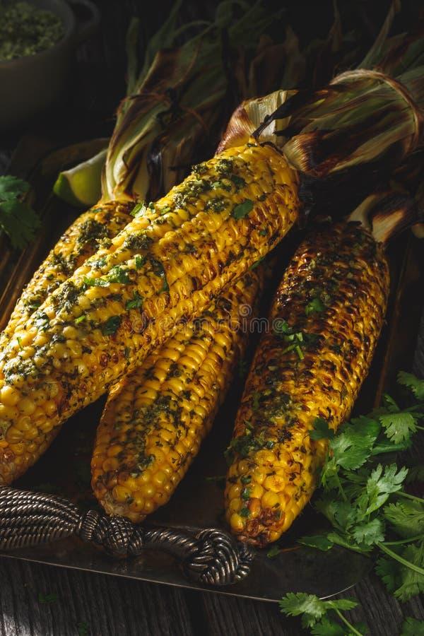 在玉米棒的烤玉米用黄油草本 免版税图库摄影