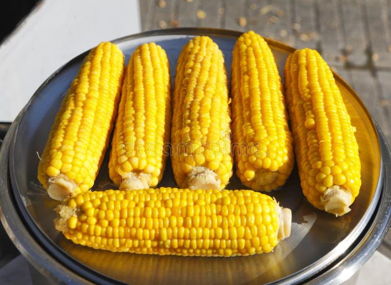 在玉米棒的玉米 图库摄影