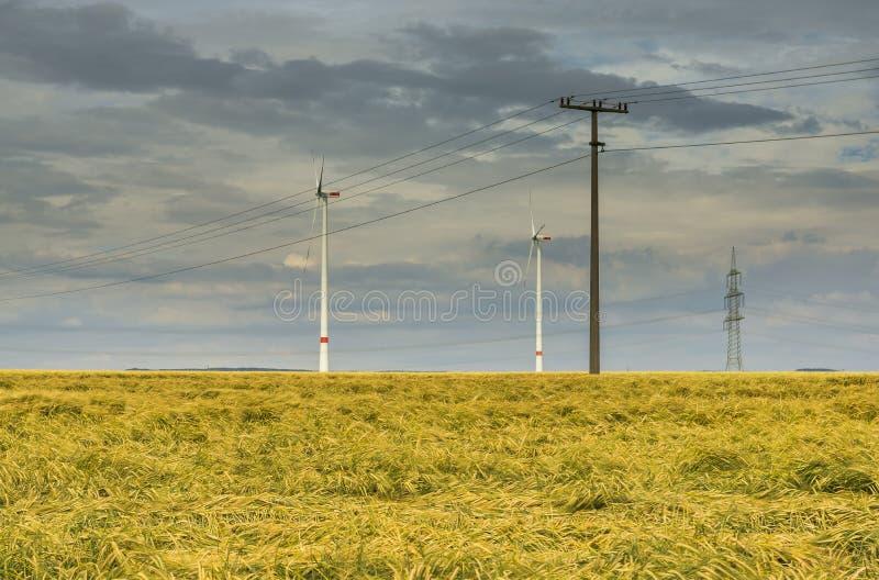 在玉米田的剧烈的云彩天空有黑暗的雨云和输电线和风轮机的 库存图片