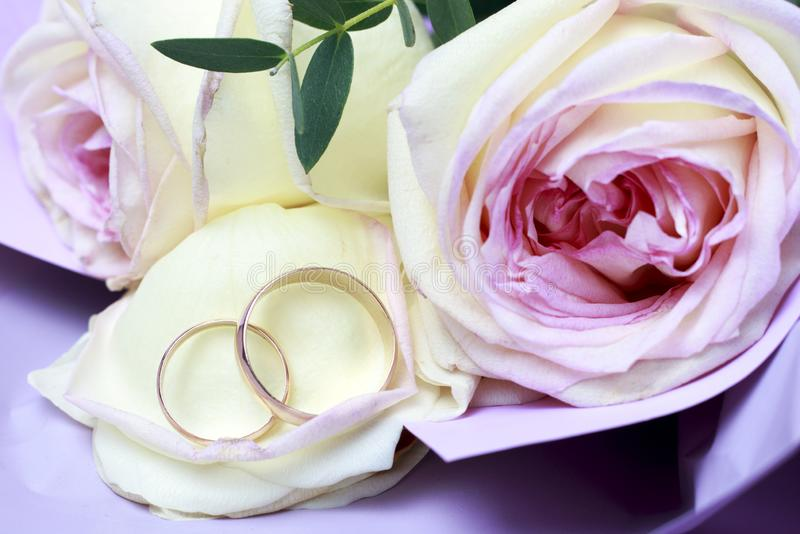 在玫瑰花束,婚姻的概念的金黄结婚戒指 库存照片