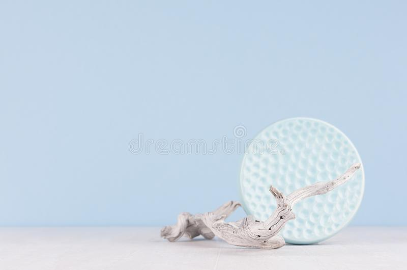 在现代内部, ikebana -软绵绵地淡色浅兰的光滑的陶瓷有肋骨盘和老干燥分支的时髦颜色在白色木头 库存图片