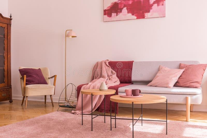 在现代灰色沙发旁边的两张木咖啡桌有枕头和毯子的在可爱的粉红彩笔客厅内部 免版税图库摄影