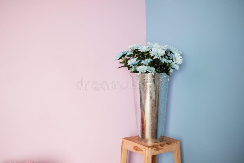 在现代花瓶装饰设计的白花在立场有桃红色和蓝色墙壁背景 库存照片