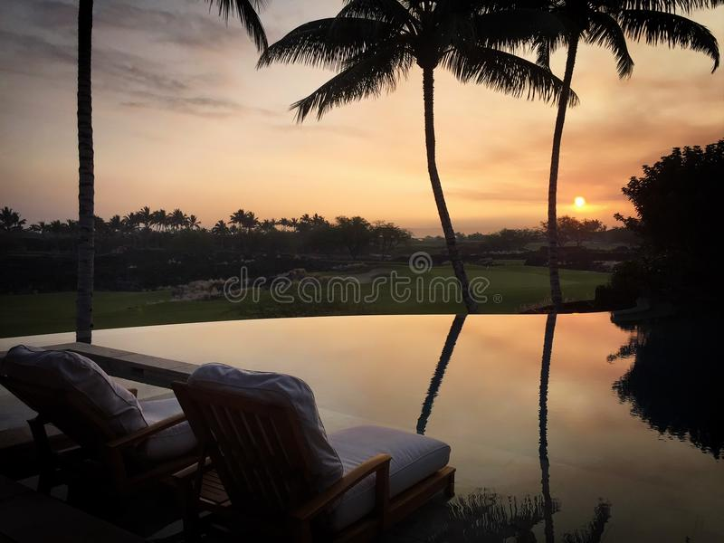 在现出轮廓的棕榈和反射后的太阳设置在无限水池和高尔夫球场在夏威夷 免版税库存图片