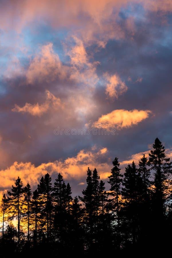在现出轮廓的森林之外的剧烈和充满活力的云彩 图库摄影