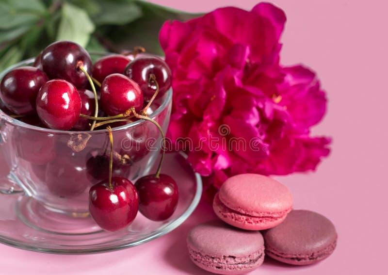 在玻璃杯子的樱桃用蛋白杏仁饼干和牡丹在桃红色 库存图片