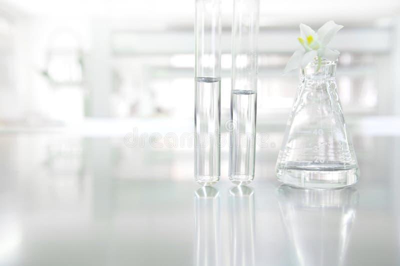 在玻璃烧瓶和试管的白色兰花花在科学cosm 库存照片