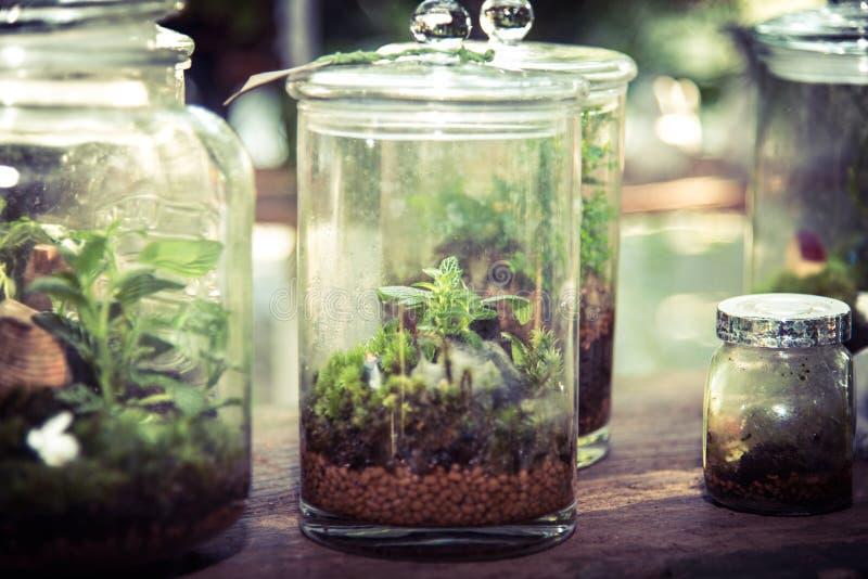 在玻璃瓶子的玻璃容器 库存照片