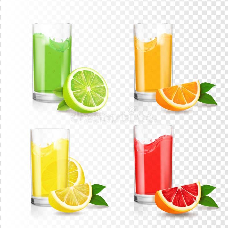在玻璃的新鲜的柑橘汁 桔子,柠檬,石灰,葡萄柚饮料 现实透明集合传染媒介例证 皇族释放例证
