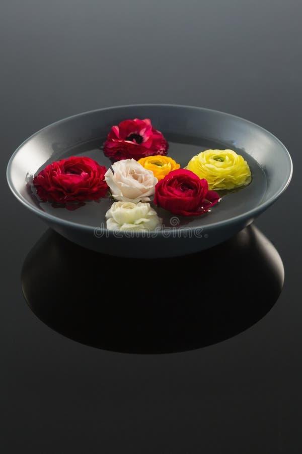 在玻璃碗的红色,白色和黄色玫瑰用水 库存图片
