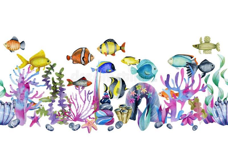 在珊瑚和海石头无缝的边界中的水彩海洋热带异乎寻常的鱼 向量例证