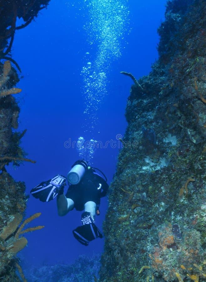 在珊瑚墙壁之间的孤零零轻潜水员在Cozume 库存照片