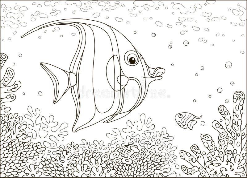 在珊瑚的蝴蝶鱼 向量例证