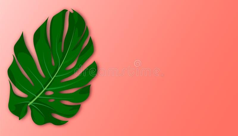: 在珊瑚背景的热带叶子 r 向量例证
