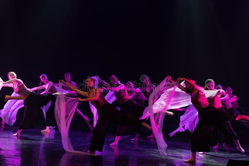 在理想和现实6之间--舞蹈戏曲驴得到水 免版税图库摄影