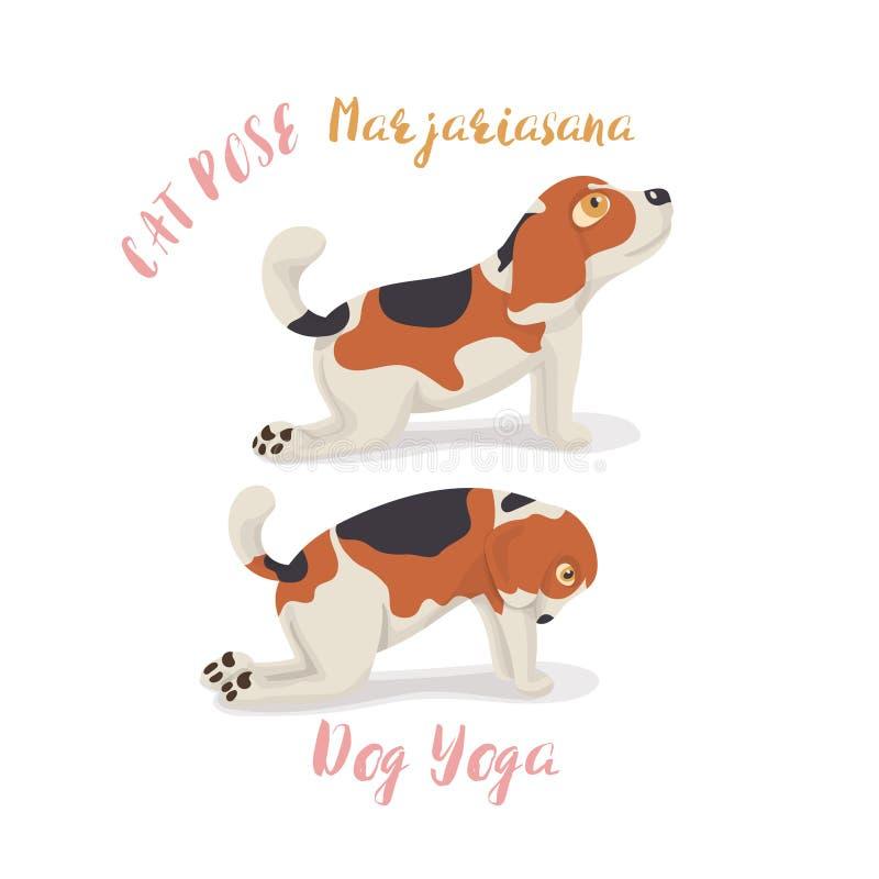 在瑜伽姿势凝思,猫姿势,Marjaryasana的逗人喜爱的动画片小猎犬狗 库存例证