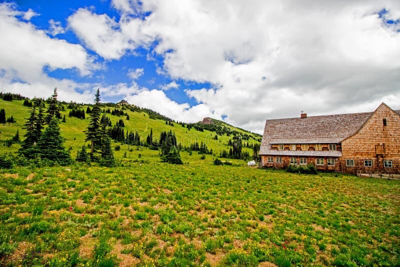 在瑞尼尔山国家公园的风景在华盛顿州美国 免版税图库摄影