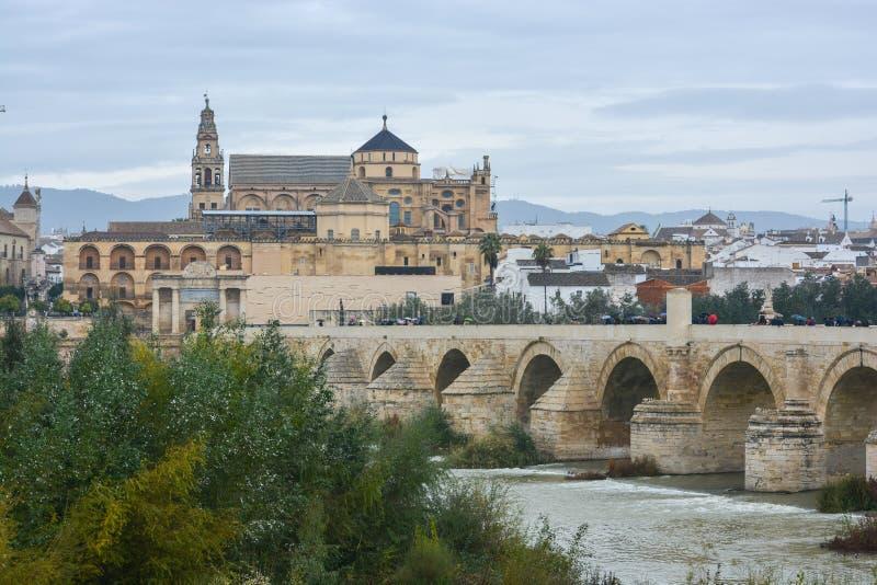 在瓜达尔基维尔河的罗马桥梁和豆科灌木在科多巴 免版税库存图片