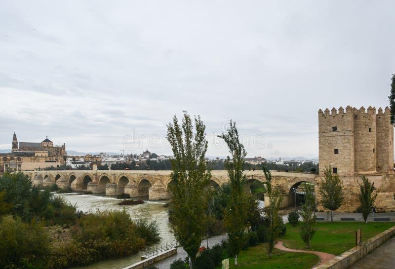 在瓜达尔基维尔河的罗马桥梁和豆科灌木在科多巴 免版税库存照片