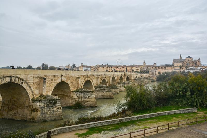 在瓜达尔基维尔河的罗马桥梁和豆科灌木在科多巴 免版税图库摄影