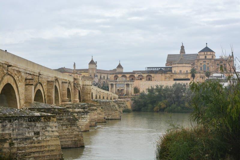 在瓜达尔基维尔河的罗马桥梁和豆科灌木在科多巴 库存图片