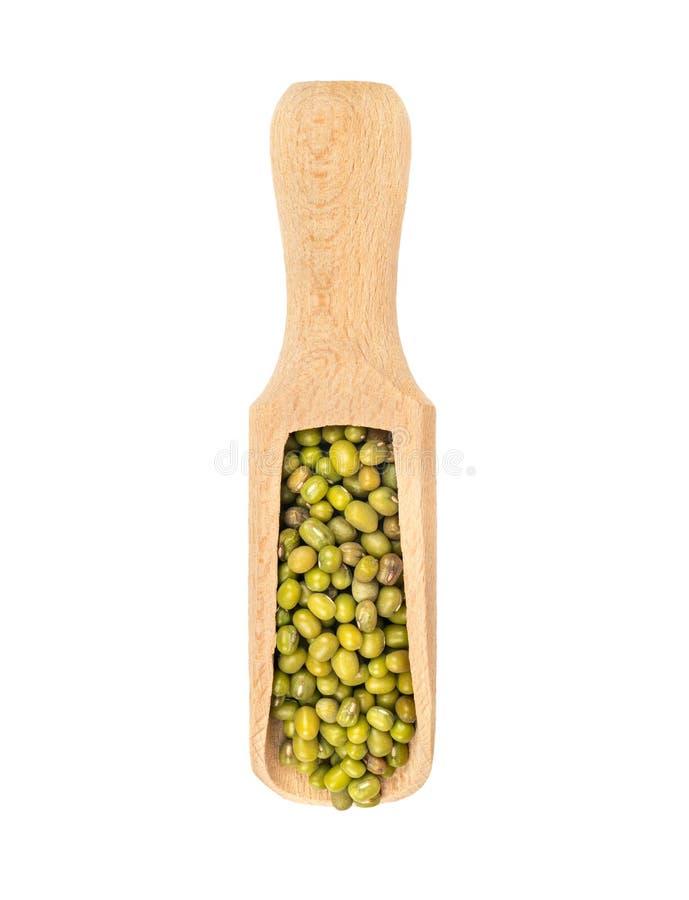在瓢的绿豆 库存图片