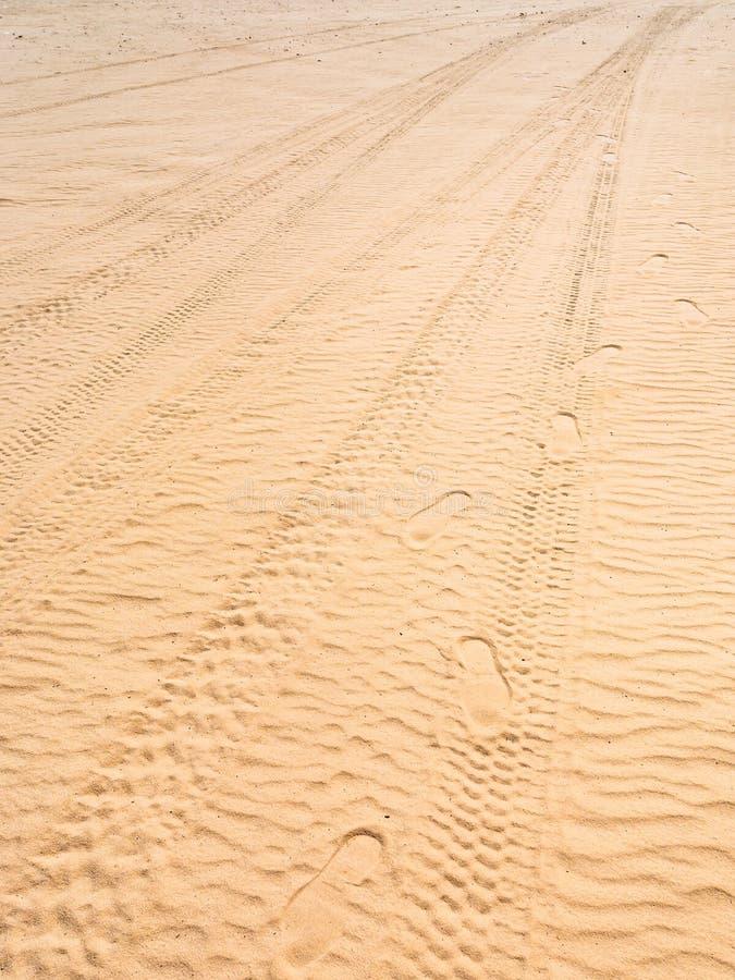 在瓦地伦沙漠疲倦在沙丘沙子的版本记录  库存照片