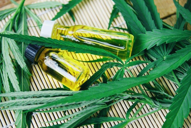 在瓶产品的大麻油- CBD从大麻叶子大麻叶子的油萃取物 免版税库存图片