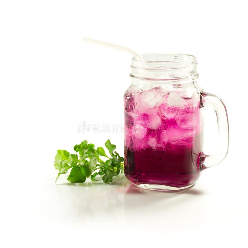 在瓶子的刷新的夏天饮料 免版税库存照片