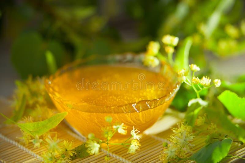 在瓶子的可口菩提树蜂蜜在桌上 免版税图库摄影