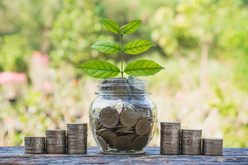 在瓶子的硬币有金钱堆步生长金钱的,概念financ 免版税库存照片