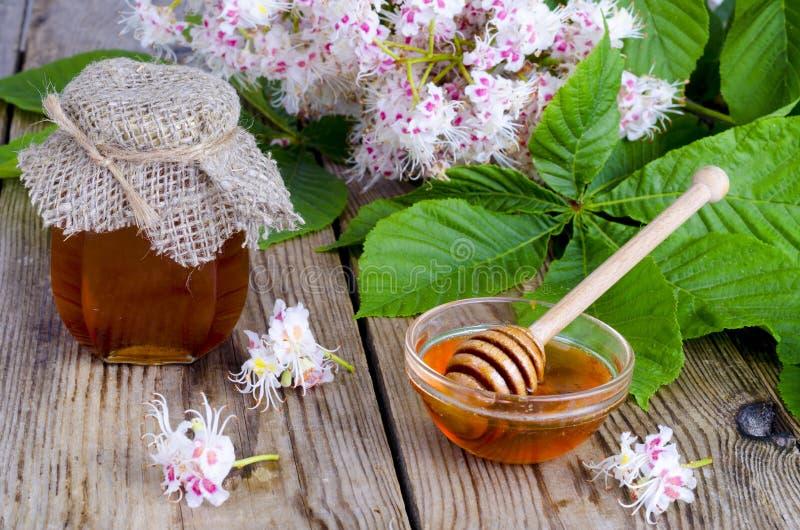 在瓶子的芬芳栗子蜂蜜有开花花的 免版税图库摄影