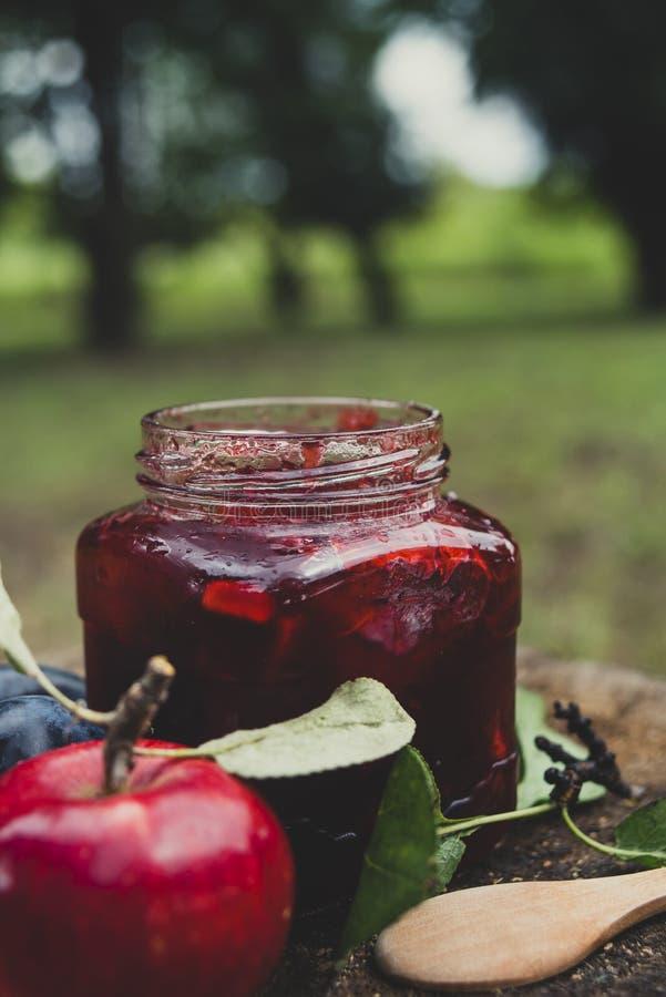 在瓶子的苹果计算机和李子果酱在树桩 免版税图库摄影