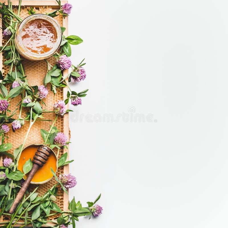 在瓶子的蜂蜜有浸染工、蜂窝框架和野花的在白色背景,顶视图 免版税库存图片