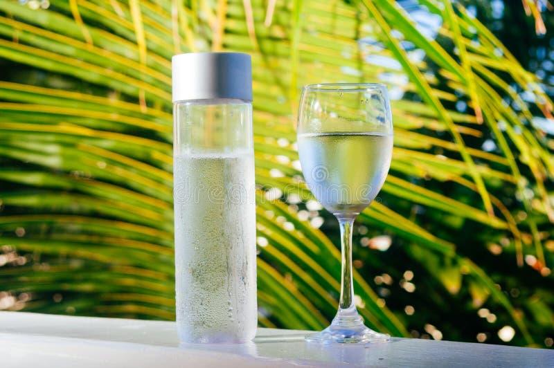 在瓶的刷新的可喝的冷水 冷水有热带背景 库存图片