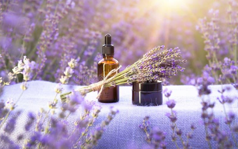 在瓶的根本熏衣草油有在桌上的吸管的在淡紫色领域 水平的特写镜头 免版税库存图片