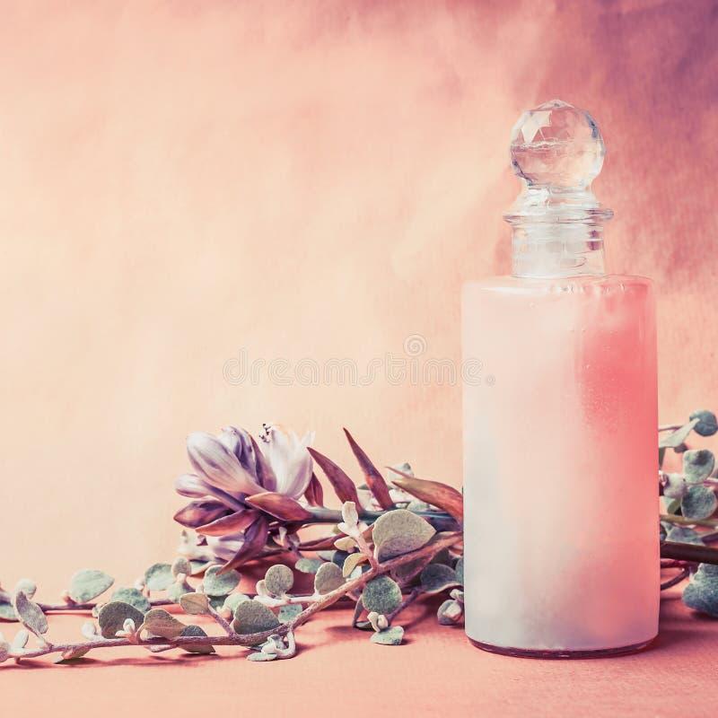 在瓶的自然化妆产品用草本和花在桃红色背景,正面图,正方形,拷贝空间 健康皮肤或身体 免版税库存图片