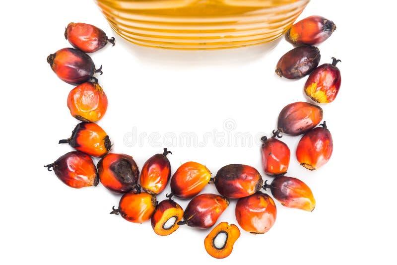 在瓶的被提炼的棕榈油有新鲜的油棕榈树的结果实 免版税库存照片