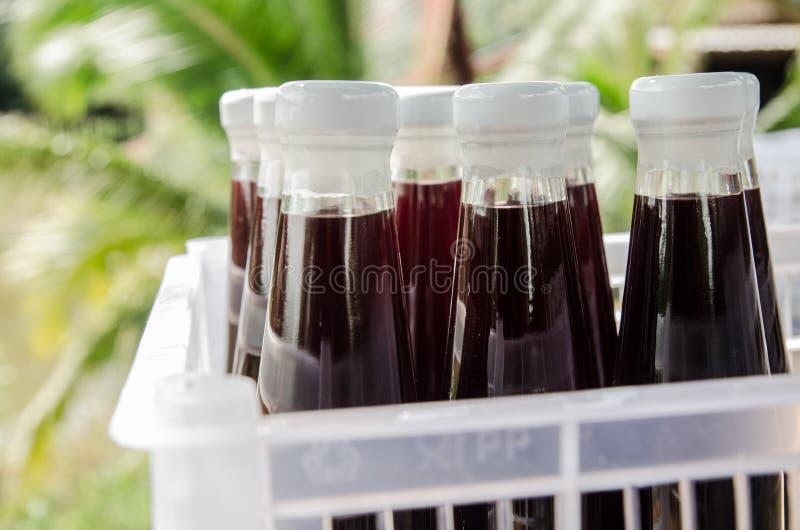 在瓶饮料的桑树汁 免版税库存照片