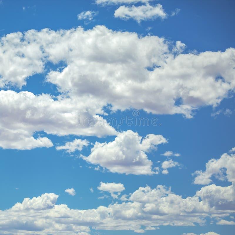 在生动的蓝天的白色松的云彩 免版税库存图片
