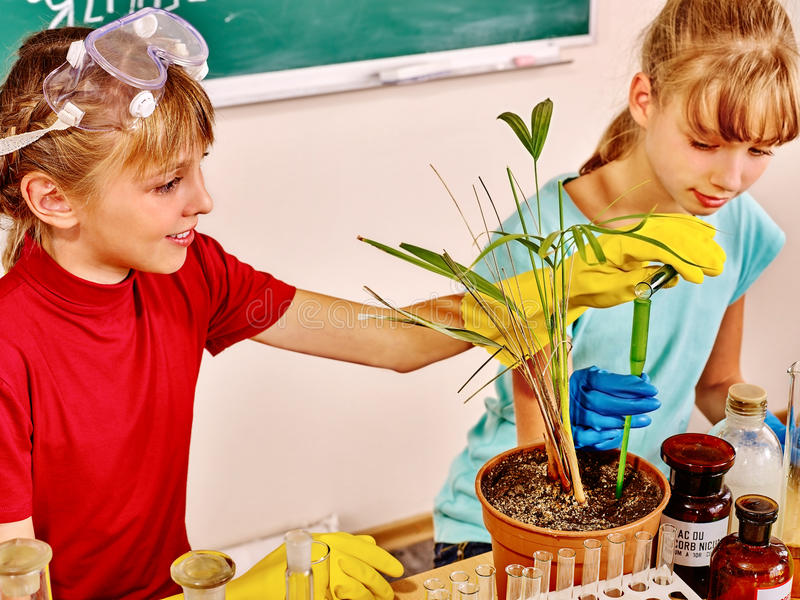 在生物课的孩子 免版税库存照片