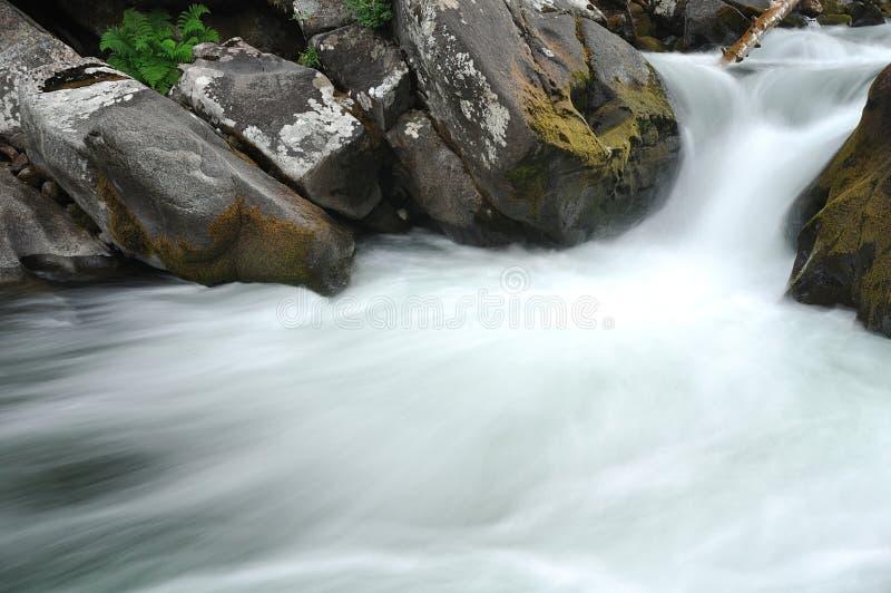 在生苔岩石的冲的河水 免版税库存图片