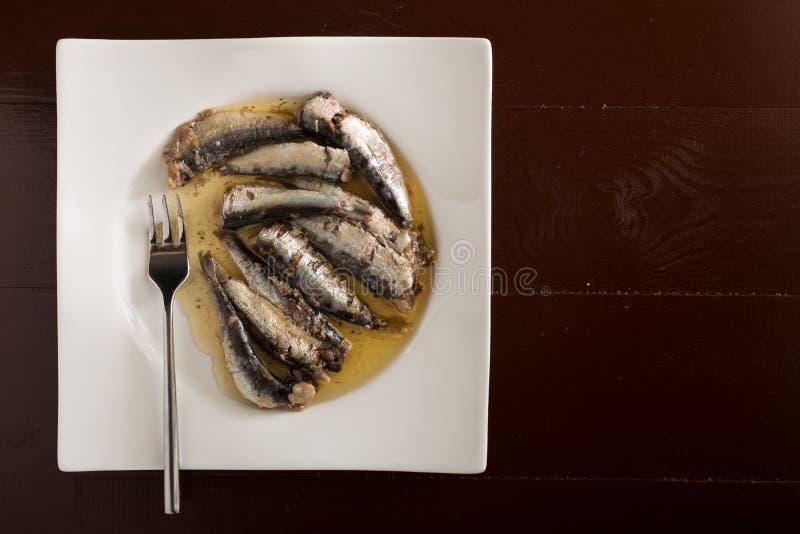 在用卤汁泡的沙丁鱼上的平的位置在油在一块白色板材服务 免版税库存图片