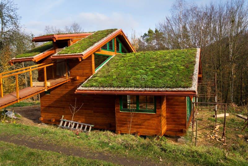 在用植被盖的木大厦的绿色生存屋顶 库存照片
